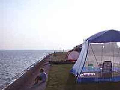 Goose Island SP