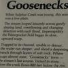 Goosenecks Of Sulphur Creek Info Plaque