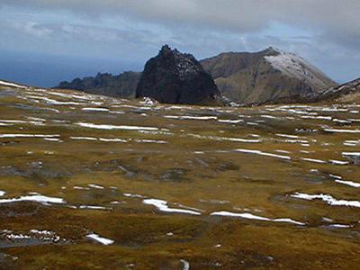 Gough Island Top View