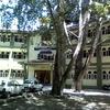 Government Degree College Ganderbal