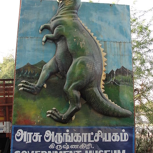 Government Museum Krishnagiri