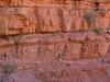 Grand Canyon North Rim Hike AZ