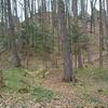 Góra Sobień Nature Reserve