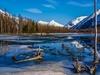 Great Alaskan Wilderness - Seward Highway Near Anchorage AK