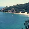 Great Barrier Island Coastal View