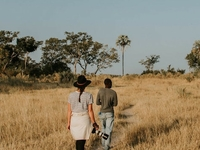 Great Botswana Safari