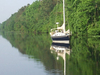 Great Dismal Swamp Canal