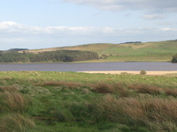 Greenlee Lough