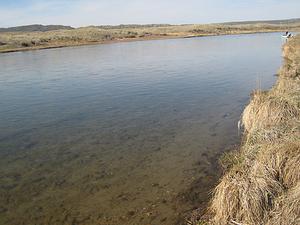 Greys Río