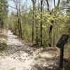 Gulpha Gorge Trail