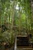 Gunung Gading National Park - Way