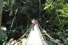 Gunung Stong State Park - Area