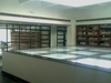 Guru Gobind Singh Indraprastha University  Library