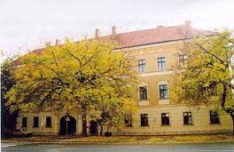 Gymnasium Of The