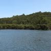 Garigal Parque Nacional