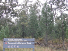 Garrawilla National Park