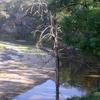 Goulburn Parque Nacional del Río