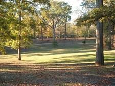 Grant Park Field