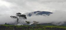 Gunung Gede In The Clouds