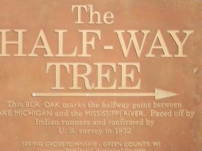 Half   Way  Tree Mark