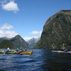 Hall Arm @ Doubtful Sound - Southland NZ