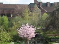 Technical University Of Hamburg