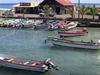 Hanga  Roa  Harbour