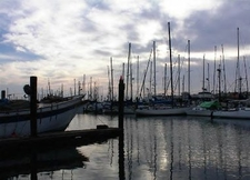 Harbor At Moss Landing State Beach