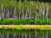 Harlequin Lake Wyoming