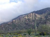 Harquahala Mountains
