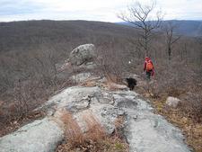 Harriman Ridge Trail Views
