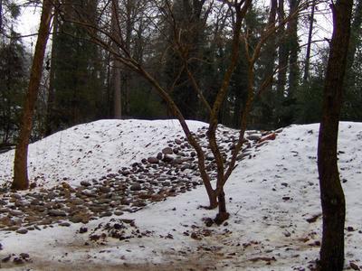 Hatcher Winter