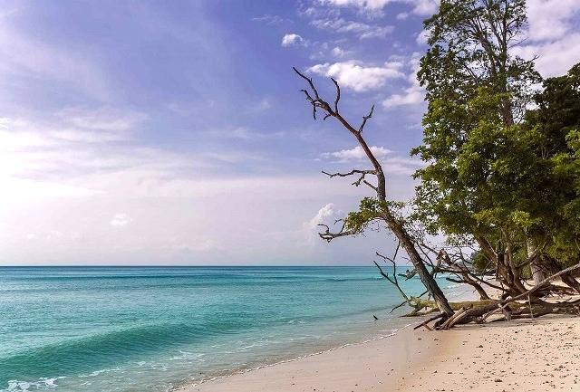 Fun-filled Andaman Holiday Photos