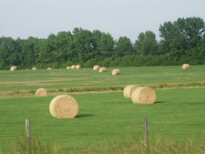 Hay Field North Of Athens