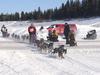 Hay  River Dog Sled