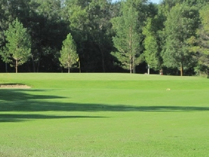 Hazen Golf Club