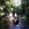 Shiawassee Río