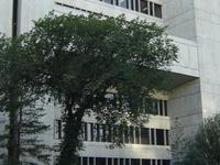 Universidad de Saskatchewan