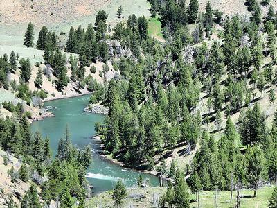 Hellroaring Trails - Yellowstone - USA
