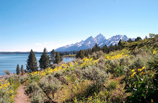 Hermitage Point Trail At Grand Tetons - Wyoming - USA