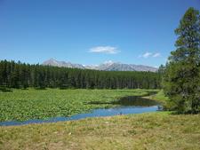 Heron Pond Swan Lake Trail At Grand Tetons - Wyoming - USA