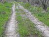 Hike Or Bike Along The Rowdy Bend Trail