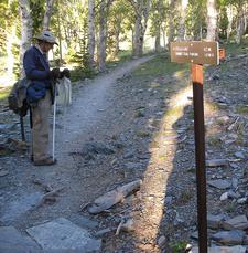 Hiker On Wheeler Peak Trail