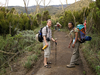 Hikers Along Machame Route - Kilimanjaro