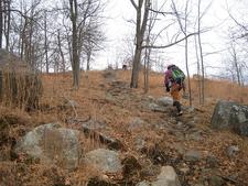 Hiking Harriman Ridge