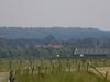 Hill Ridge Near Amerongen