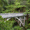 Historic Bridge To Nowhere - North Island - New Zealand
