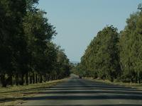 Hlane Royal National Park
