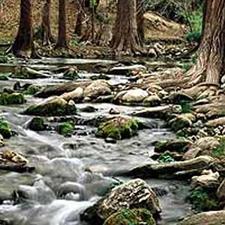 Honey Creek SNA