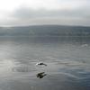 Honeoye lago